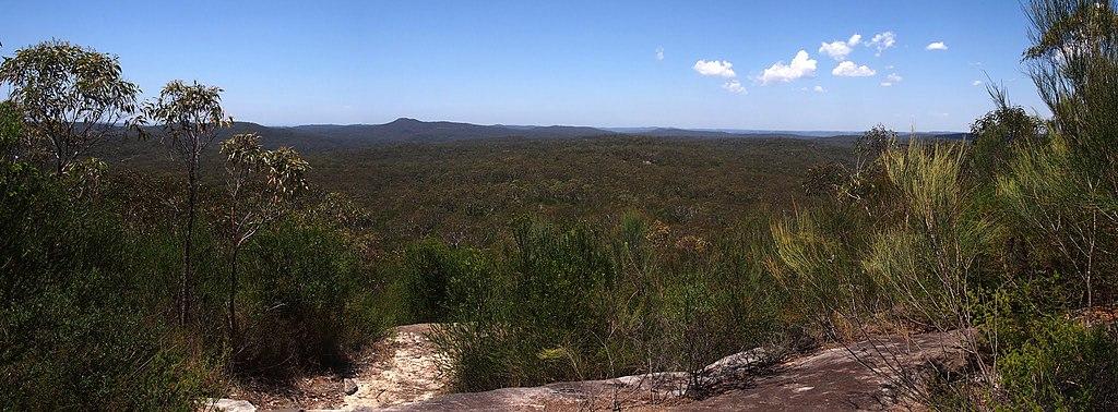 View across Brisbane Water National Park from Scopas Peak - panoramio