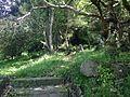View near Yuga Shrine in Usa Shrine.JPG