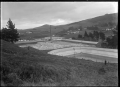 View of the Roslyn Woollen Mill, Dunedin. ATLIB 295446.png