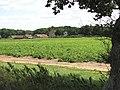 View towards Hardley Hall - geograph.org.uk - 1425472.jpg