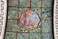Villa giulia, portici con affreschi di pietro venale e altri, pergolato 13.jpg