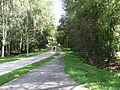Visaginas, Lithuania - panoramio (68).jpg