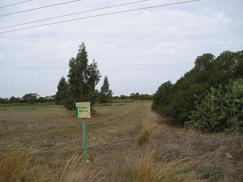 File:Vista de la parcela objeto de ubicación de la parte sur de la Escuela Superior de Ingeniería. Se aprecia el cartel indicativo del Parque Natural de la Bahía de Cádiz. - panoramio.jpg