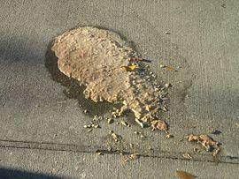 Vómito derramado en la calle.