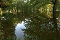 Włocławek,powódż w Parku Sienkiewicza - panoramio (1).jpg