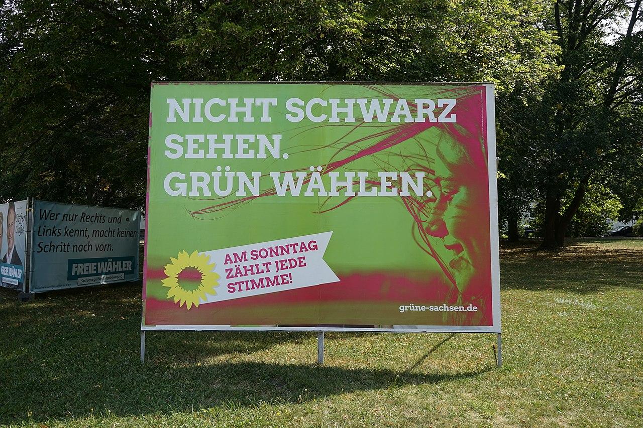 Wahlplakat der Grünen in Plauen 20190828 046.jpg