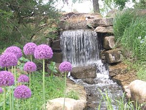 Overland Park, Kansas - Waterfall and Flowers at the Overland Park Arboretum and Botanical Gardens.