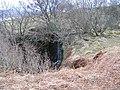 Waterfall on Allt Mor - geograph.org.uk - 126940.jpg