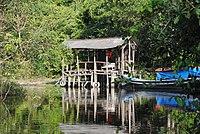Way Kanan River Camp - panoramio.jpg