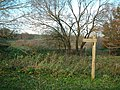 West of Harmondsworth - geograph.org.uk - 88623.jpg