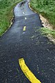 Wet winding road.jpg