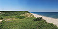 White Crest Beach Wellfleet.jpg