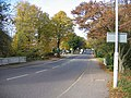 Whitehall Road between Hatch Forest and Chingford Green - geograph.org.uk - 607491.jpg