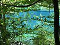 WikiProjekt Landstreicher Christlessee 11.jpg