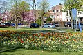 Wilhelminapark, Breda P1360763.jpg