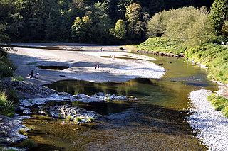 Wilson River (Oregon) river in the United States of America