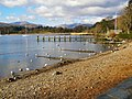 Windermere, shore at Waterhead - geograph.org.uk - 1732936.jpg