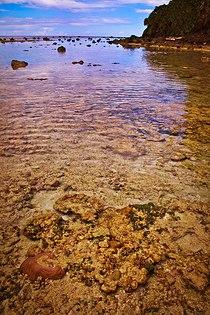 Wolo Beach, Miangas - panoramio.jpg
