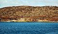 Wooded West Loch Tarbert - geograph.org.uk - 1167162.jpg