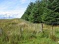 Woodland near Hare Hill - geograph.org.uk - 222879.jpg