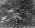 Wounded once, this German would not quit and was grenaded to death. Germany, ca. April 1945. - NARA - 559235.tif