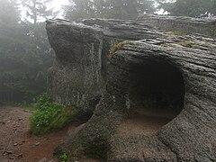 Wychodnia skalna
