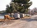 Xamil - Driving Albania 36 (3866845809).jpg