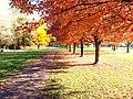 Yakima Greenway - panoramio (34).jpg