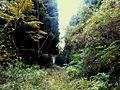 Yukicho Oaza Tada, Saeki Ward, Hiroshima, Hiroshima Prefecture 738-0721, Japan - panoramio (22).jpg