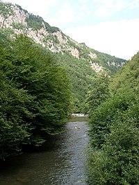 Zeljeznica River Sarajevo 1.JPG
