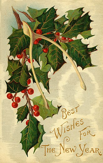 Furcula - New Year postcard from around 1909 featuring a wishbone as a lucky symbol