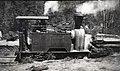 'Coffee Pot' Kerr Stuart 3ft gauge 0-4-0T locomotive (No. 643 of 1898) at Powelltown.jpg