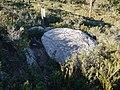 Étangs de La Jonquera - Dolmen Estanys III - 4.jpg