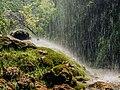 Водопад Полска скакавица.jpg