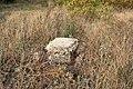 Дзержинск, останки какого-то строения - panoramio.jpg