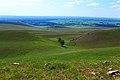Живописная пара - panoramio.jpg