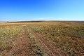 Заброшенный просёлок в восточном направлении - panoramio.jpg