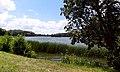 Марьино Парк Рыльский район Пруд Фото 10.jpg