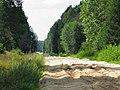 Непроезжаемая дорога neizbraucams ceļš - panoramio (1).jpg