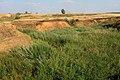 Овраг Длинный и дамба. Вид в восточном направлении - panoramio.jpg