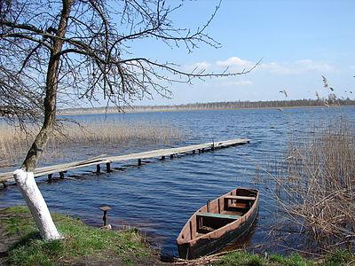 Озеро Сомине (Сарненський р-н).JPG