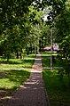 Парк Берёзовая роща в Киеве. Фото 46.jpg