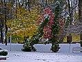 Перший сніг у вінницькому парку P1100087.jpg