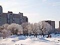 Сквер на пересечении пр. Просвещения и ул. Ивана Фомина - panoramio.jpg