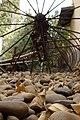 מוזיאון לתולדות גדרה והבילויים - אתרי מורשת במרכז הארץ 2015 - גדרה (215).JPG