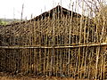 एक आदिवासी घर.jpg