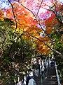 寂光院 (愛知県犬山市継鹿尾杉ノ段) - panoramio (20).jpg