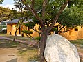 德記洋行 Old Tait ^ Co. Merchant House - panoramio (4).jpg