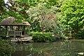 東高根森林公園 - panoramio (29).jpg