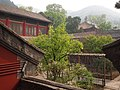 梨树院 - Pear Tree Courtyard - 2012.04 - panoramio.jpg